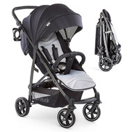 Buggy Rapid 4S (bis 25 kg) - Caviar Silver